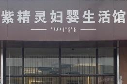 紫精灵实体店网上商城小程序